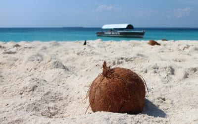 The Truth About Coconut Oil…